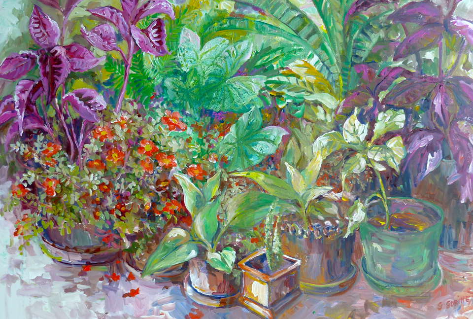 "John's Garden. Acrylic on canvas 36x24""  91.4x61.4cm AC13"