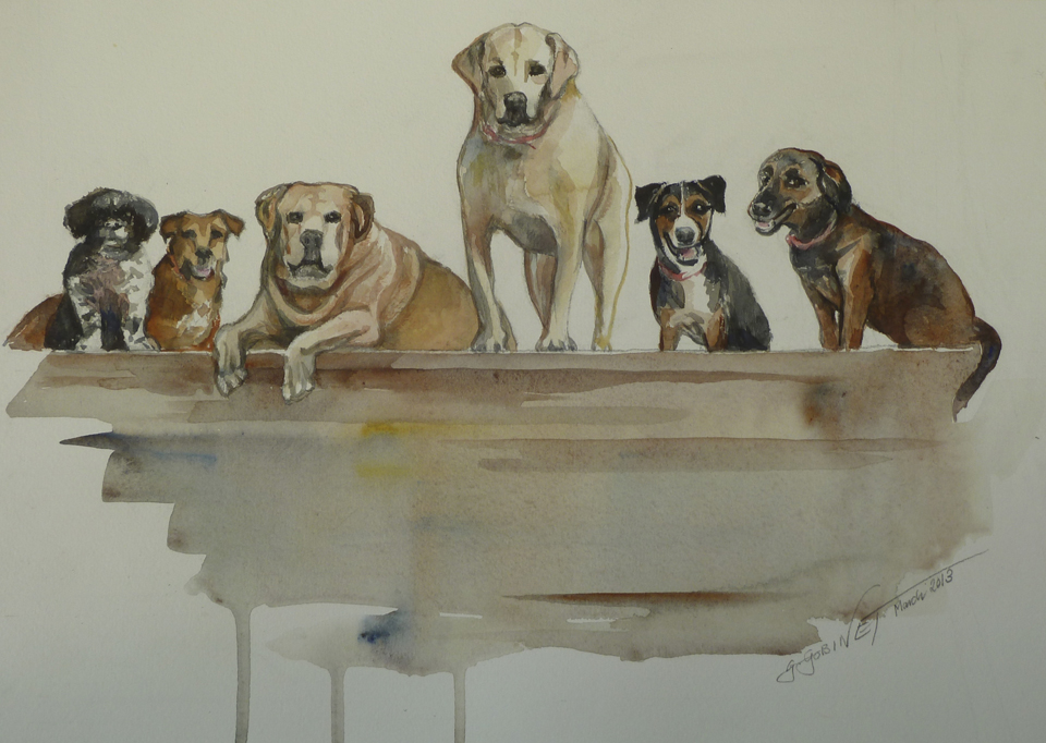 "Carrie's Canine Colony. Watercolour/Arches 16x12""   40.5x30.5cm"