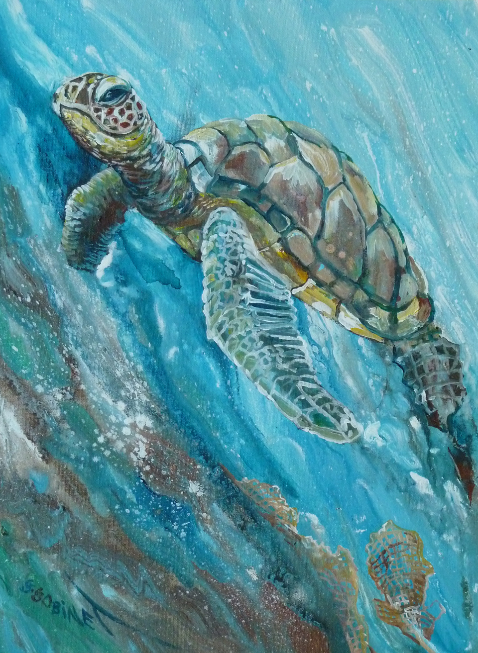 "Turtle. Acrylic on canvas panel 12x16""   30.5x40.6cm AC15"
