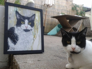 Rescue cat Eli and his portrait!