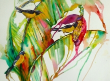 Banana flower and bananaquits